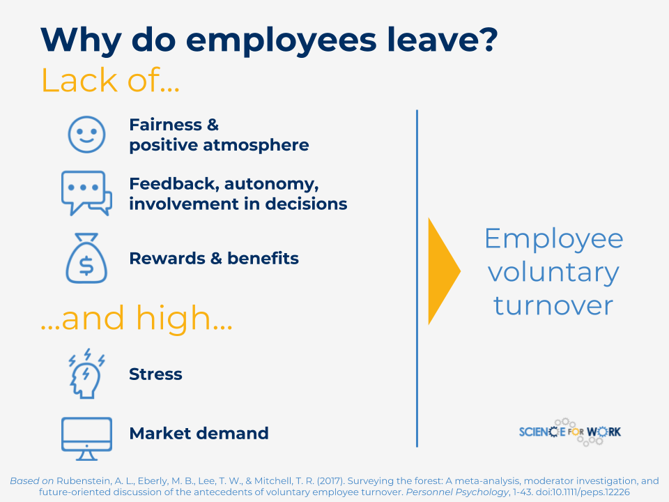 explain how productivity is affected by employee turnover